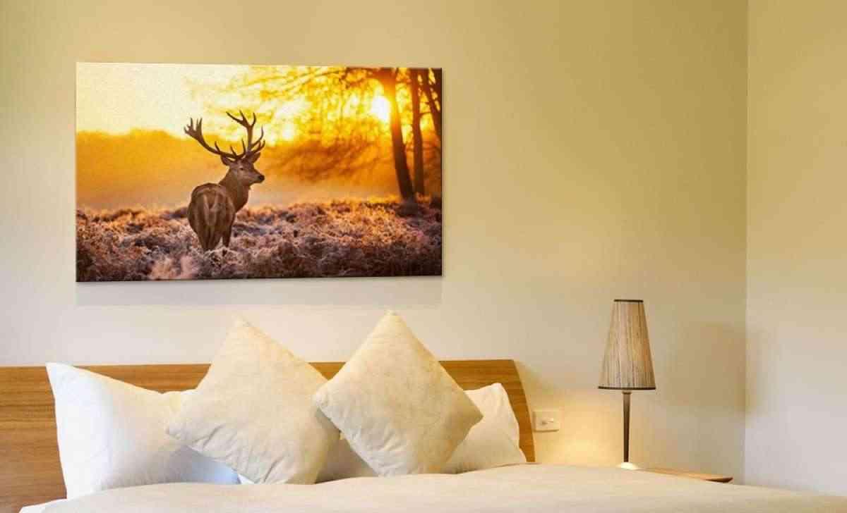 Haz tu propia foto lienzo personalizado y a decorar for Lienzos para salon modernos