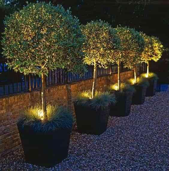 iluminar la terraza II