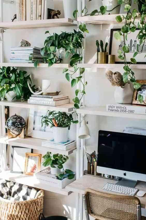 decorar con plantas IV