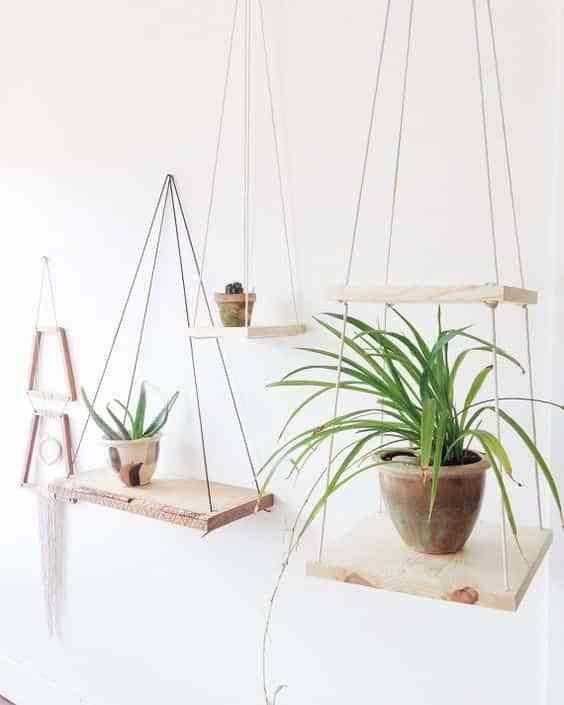 plantas colgadas VII