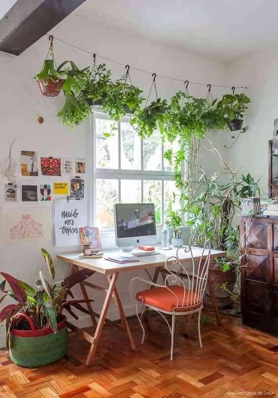 Plantas colgadas. ¡10 ideas para decorar con ellas de forma original!