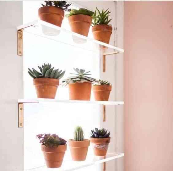 decorar el interior de las ventanas con plantas IX