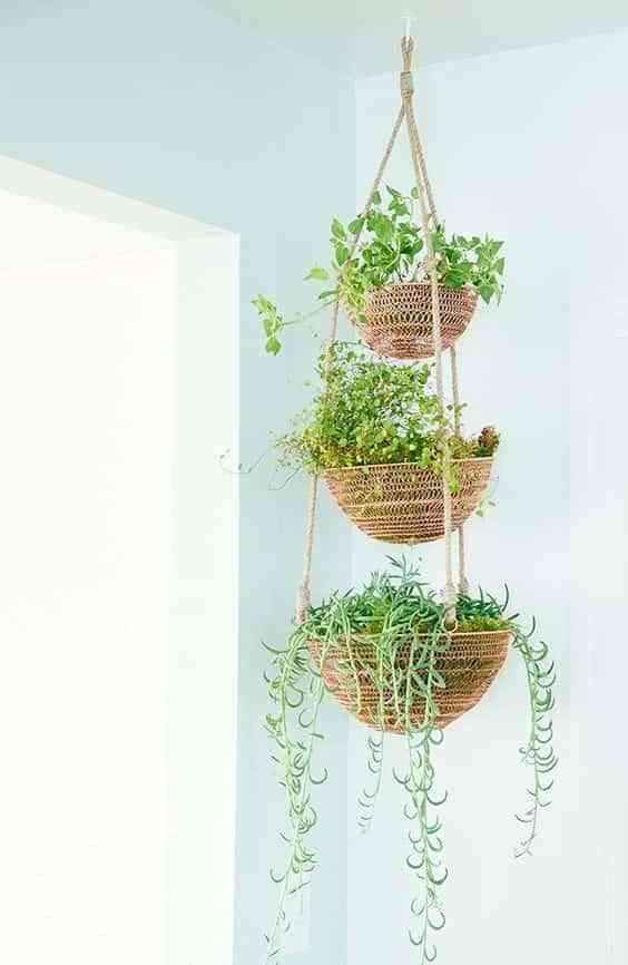 decorar el interior de las ventanas con plantas V