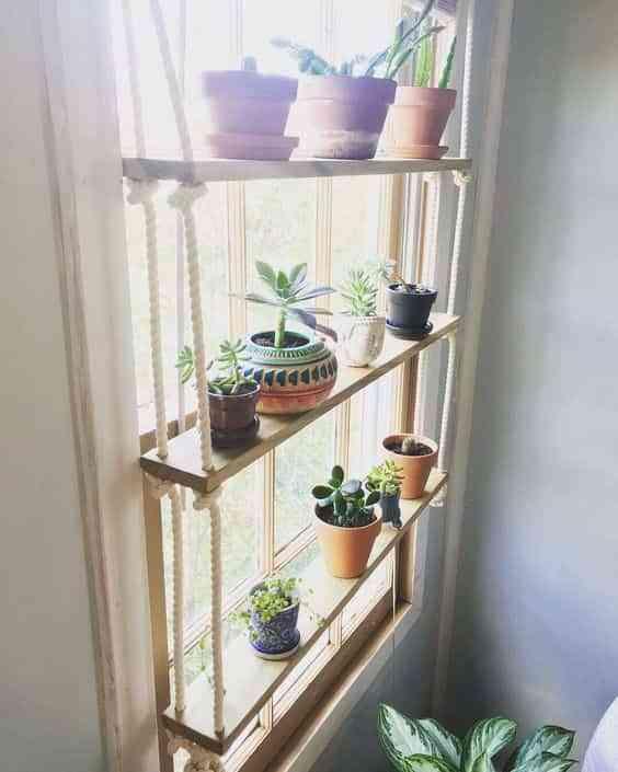 decorar el interior de las ventanas con plantas X