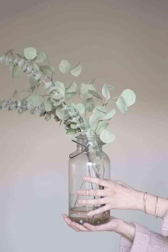 Decorar con eucalipto. ¡Lo natural está de moda!