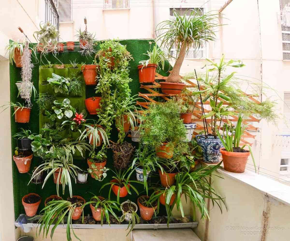Ideas geniales para sacar partido a tu jardín pequeño 3