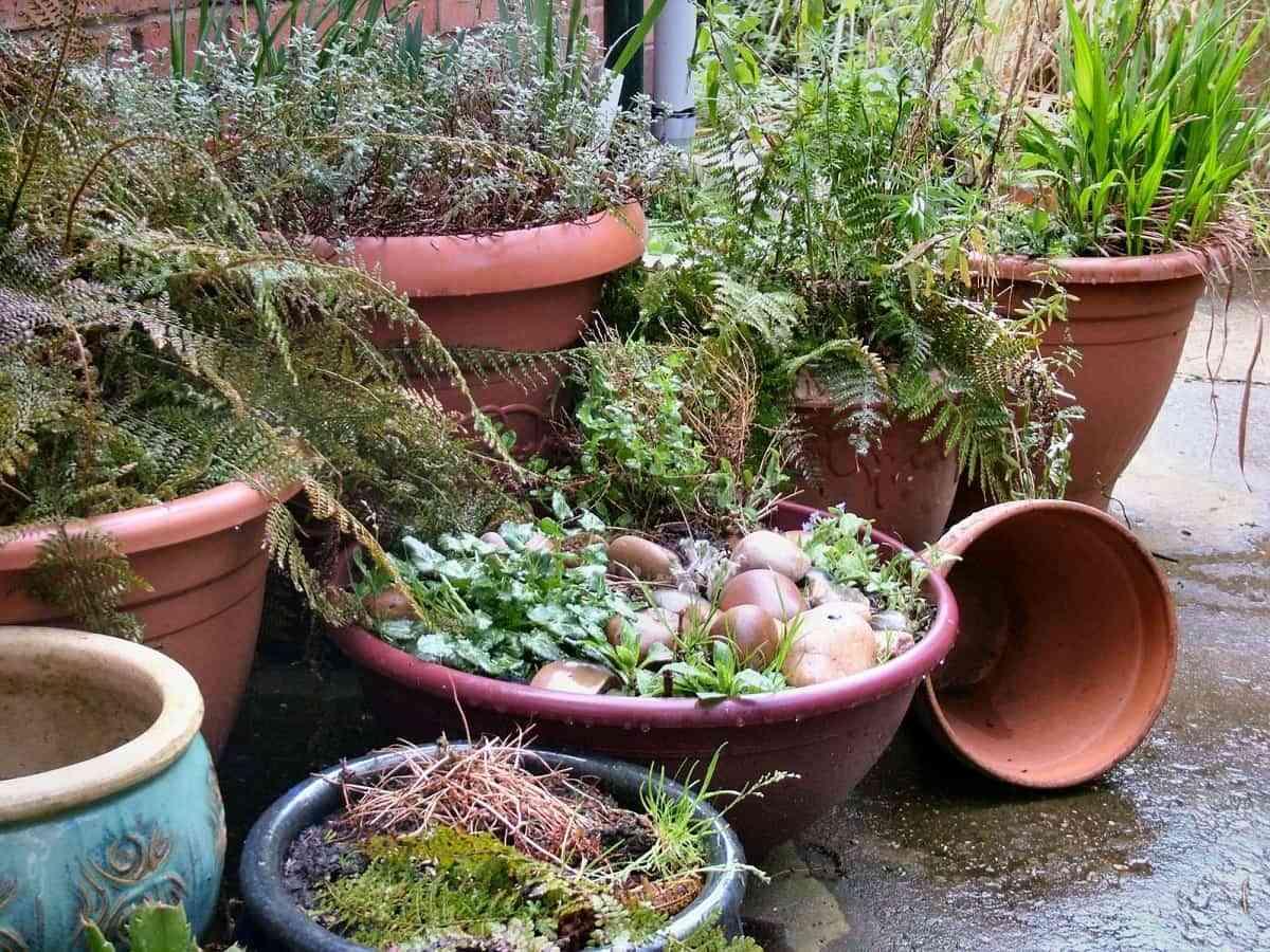 Ideas geniales para sacar partido a tu jardín pequeño 2