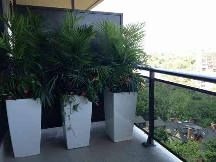 Ideas para decorar una terraza o balcón con plantas y flores 5