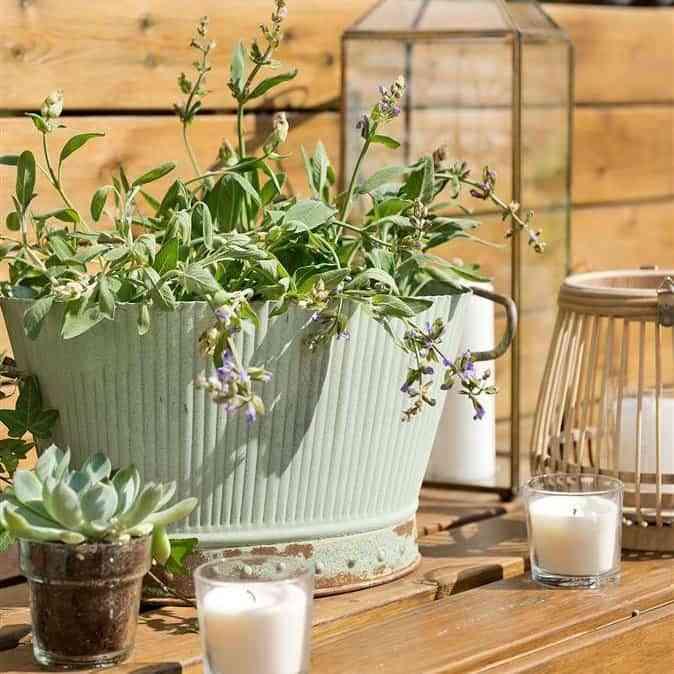 Ideas para decorar una terraza o balcón con plantas y flores 4