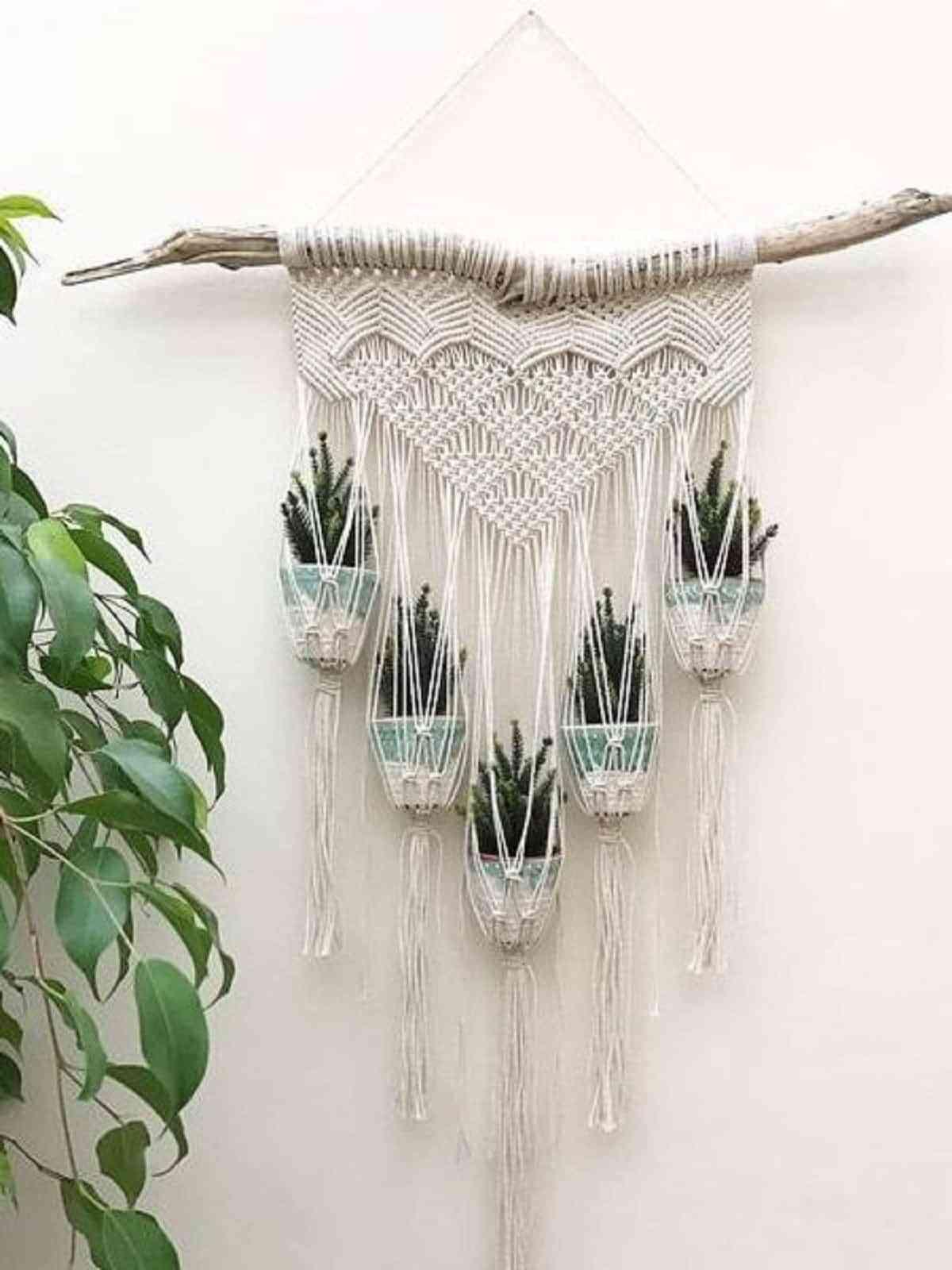 Las plantas colocadas de todas maneras decorando el espacio , no pueden faltar en el estilo boho.