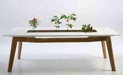 mesa-con-jardinera