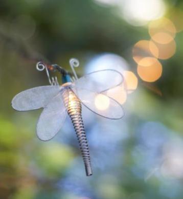 libelulas-luminosas