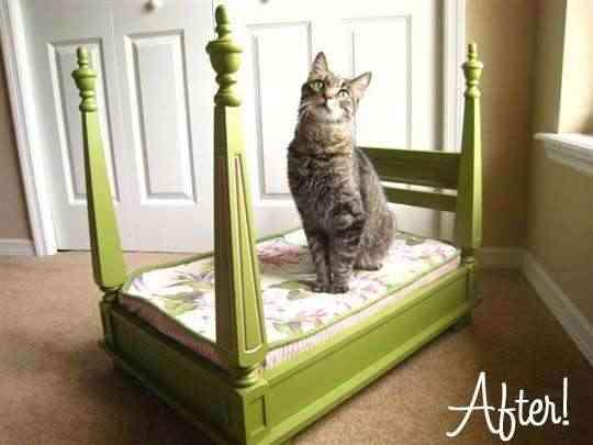 mesa cama gato2